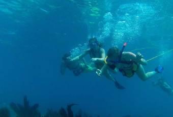 Custom Excursions Key West