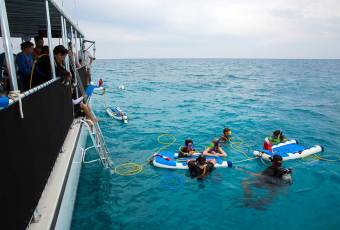 Underwater Photo Package Key West