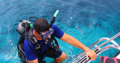 Dive Training Key West