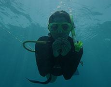 PADI Key West