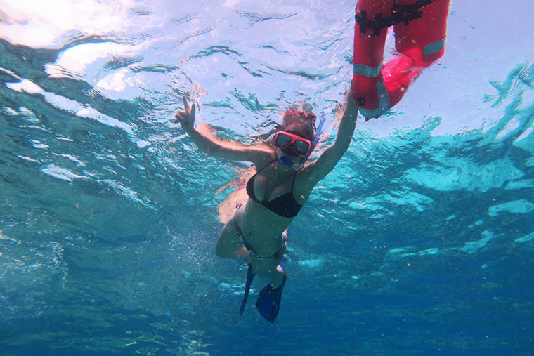 Snorkel Adventure, Snorkeling Adventures, and Snuba in Key West, FL