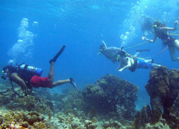Learn Scuba Diving in Key West
