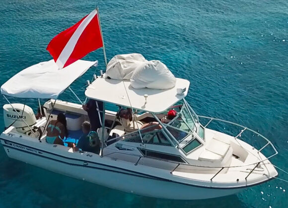 Boat Tours, Boat Cruise, and Sunset Tour in Key West