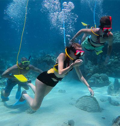Snorkeling Adventure in Key West, FL
